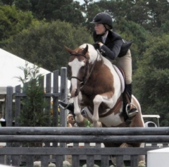 HorseShow01_sm